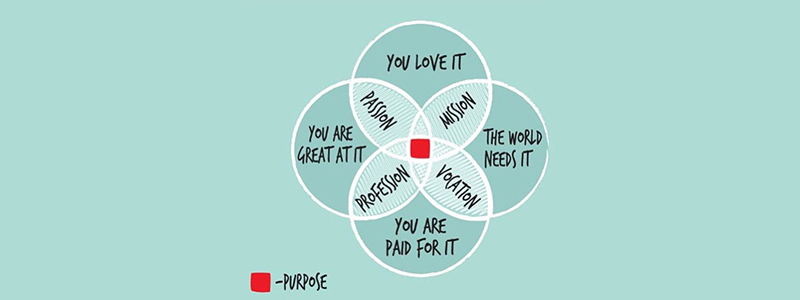 Purpose-Infographic
